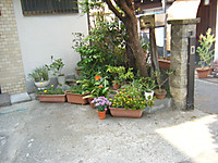 2013_05250015