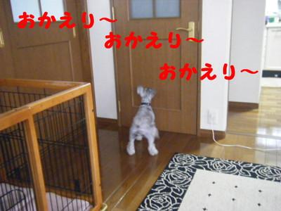 2013_07240032