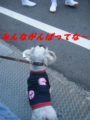 2013_10130147_2