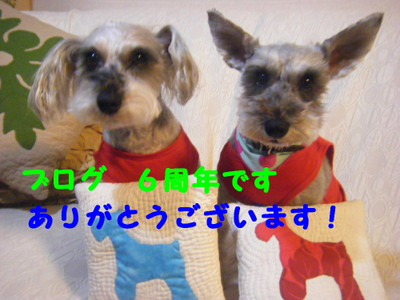 2014_02280004