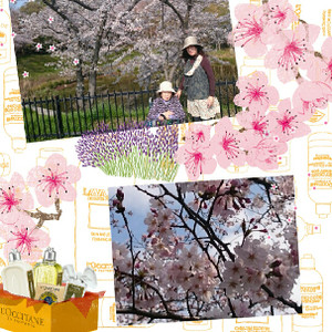 Camerancollage2015_03_31_175