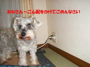 2009_030320060310kara0004