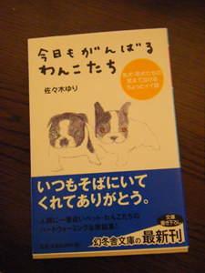 2009_030920060310kara0017