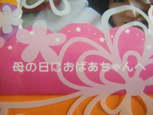 2009_051020060310kara0006