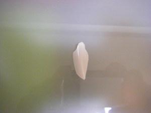 2009_07280036