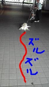 2009080617110000_2