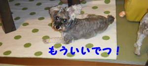2009_08220014