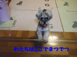 2009_09240014