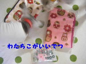 2009_10130057