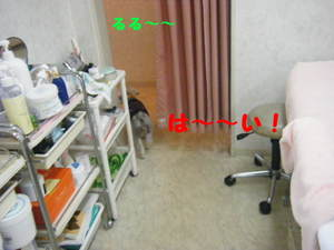2009_11110013