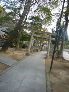 2010_01030016