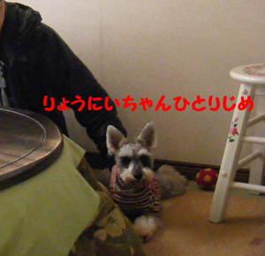 2010_01190007